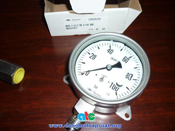 Đồng hồ đo áp suất Baumer - Đức