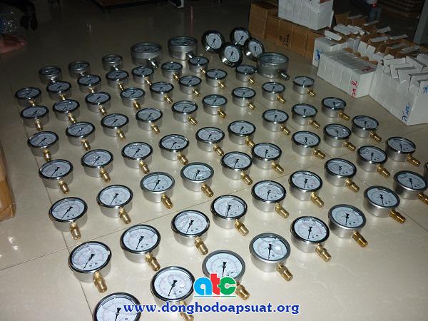 Đồng hồ đo áp suất Badotherm - Holland