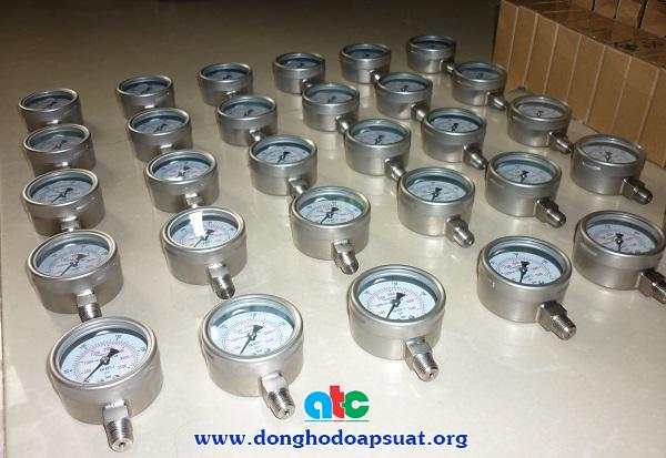 Đồng hồ đo áp suất inox, có dầu chống rung