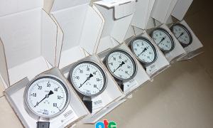 Đồng hồ đo áp suất Wika dạng ống bourdon