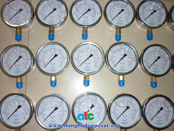 Đồng hồ đo áp suất Badotherm vỏ inox 304, chân đồng thau