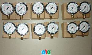 """Đồng hồ đo áp suất Wika, dial 2.5"""" (63mm), chân đồng, thẳng đứng, ren 1/4"""" NPT (13mm)"""