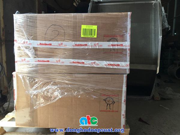 Hai kiện hàng đồng hồ đo áp suất Fantinelli và nhiệt kế lưỡng kim Fantinelli nhập khẩu từ Ý