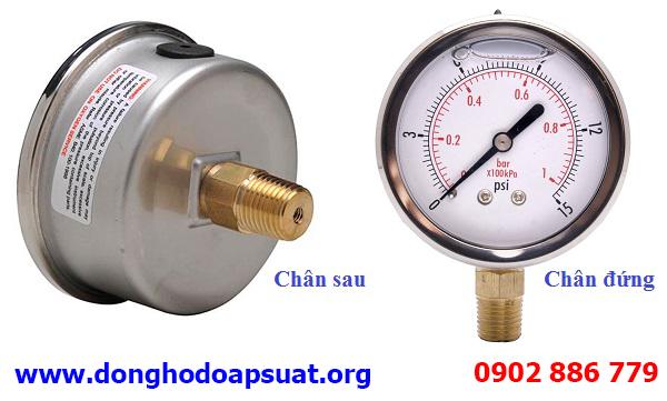 Kiểu chân kết nối thằng đứng hoặc chân sau lưng đồng hồ đo áp suất nước