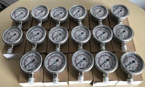 Đồng hồ đo áp suất Fantinelli full inox, D63 cấp cho Vinhome Central Park 5 Tân Cảng