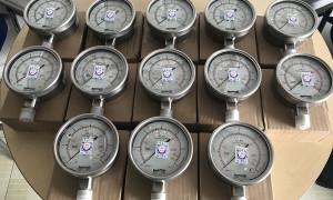 Lô hàng kiểm định đồng hồ đo áp suất Fantinelli bán cho cty Minh Tiến TPHCM
